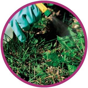 cropduster spraying crops
